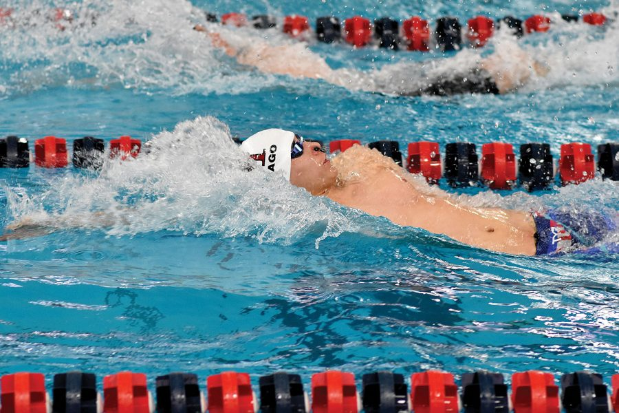 BACK BACK BACK. Swim captain Horace Shew races in the 100 Backstroke at the Sectional meet held at University of Illinois at Chicago Natatorium Feb. 17. At the state meet Feb. 23, he placed 18th in the 200 IM and 31st in the 100 Backstroke.