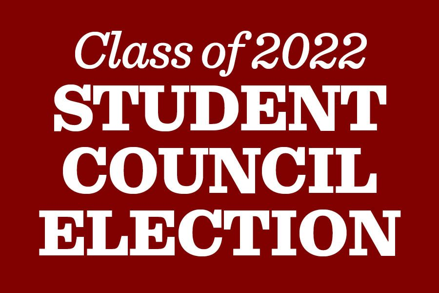 Freshman+student+council+candidates+announced%2C+campaigning+begins