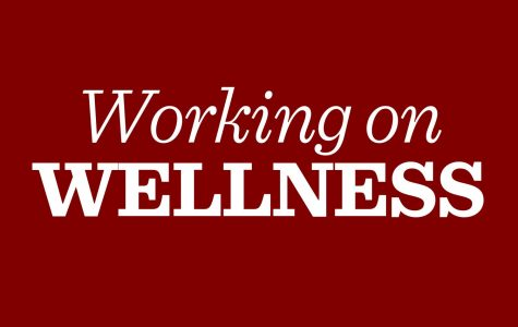 Wellness survey assembly prompts further student skepticism