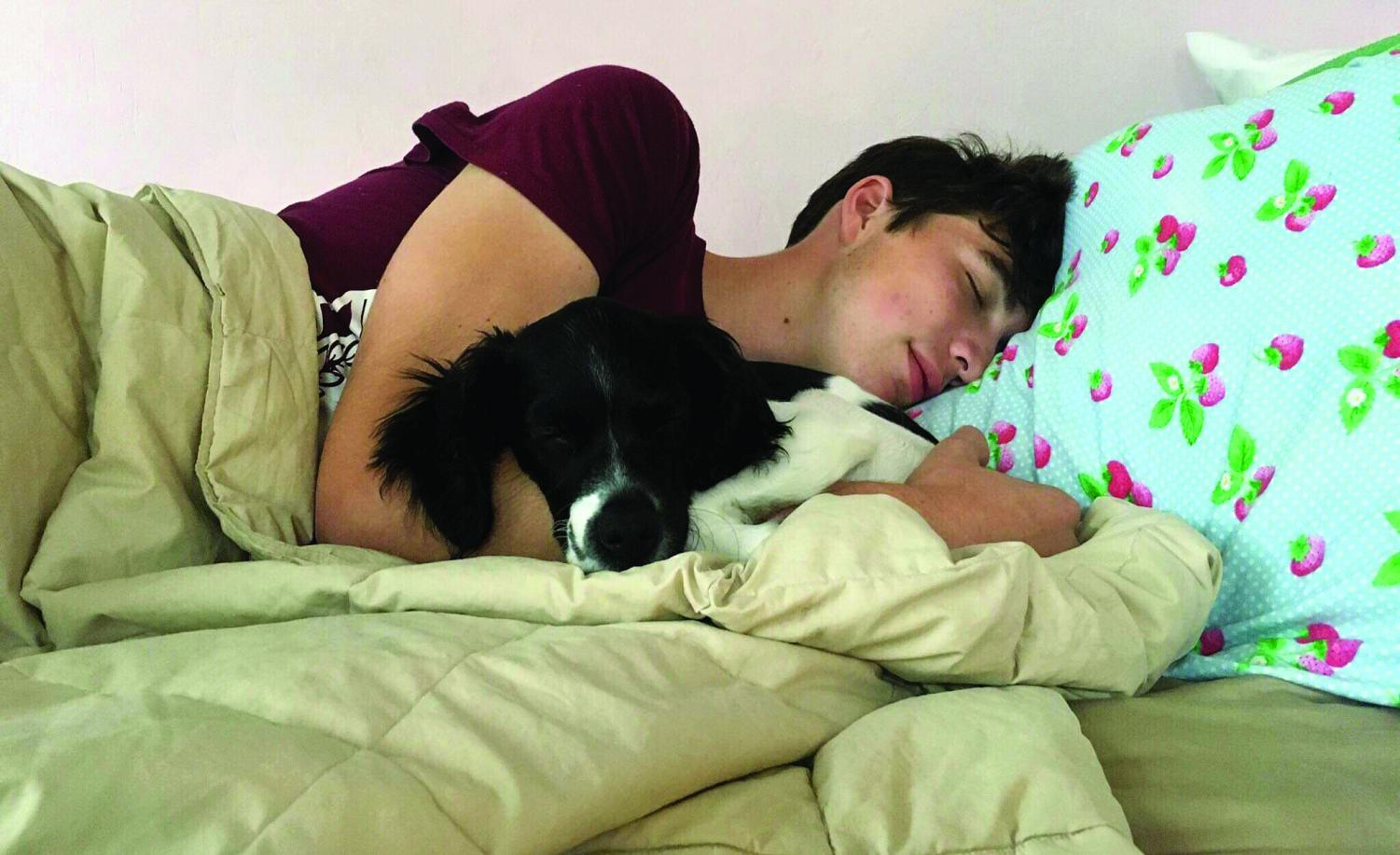 TAKING A BREAK. With his puppy in his arms, senior Jacob Beiser takes a nap, recharging after a long day. Jacob got Pippin, his dog, after he lost his nine-year-old dog over the summer.