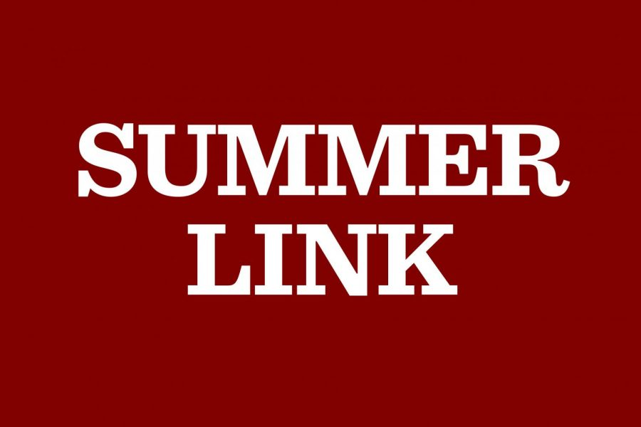 Applications open for SummerLink internships