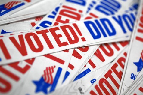 Voting a varied, new experience for seniors, juniors