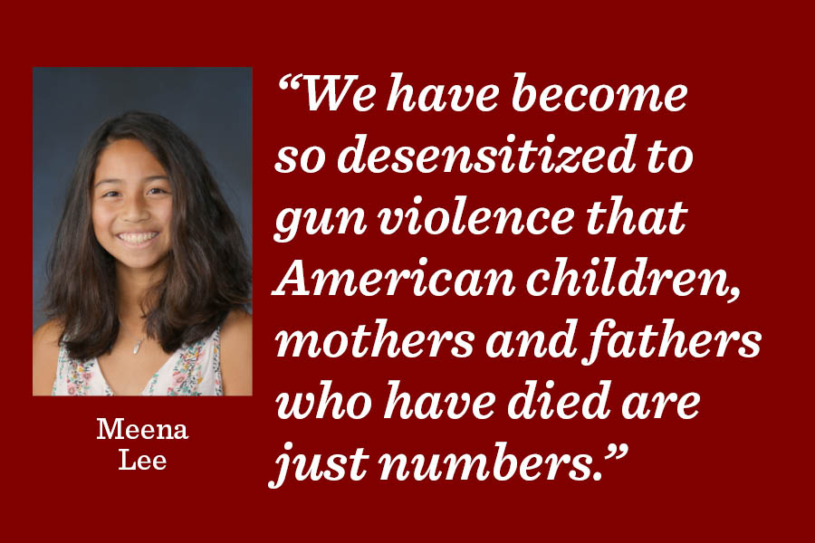 Background checks are not enough to keep Americans safe.