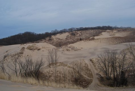The sandy edge of Warren dune in Michigan. Surrounding it are nearly 2000 acres of park land.