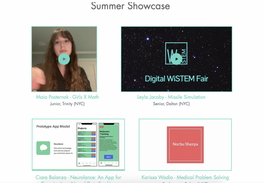 Women in STEM club struggles to adapt content to online meetings