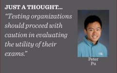Although with positive intentions, the College Board made a poor choice in discontinuing the subject tests and optional essay, and testing organizations should proceed with caution in evaluating the utility of their exams, writes news editor Peter Pu.