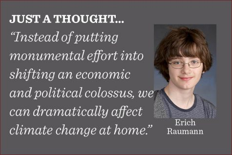 Instead of idly complaining or voting for people who promise to get rid of coal, there are real, tangible things that we can do in our homes to combat climate change much more effectively, writes reporter Erich Raumann.